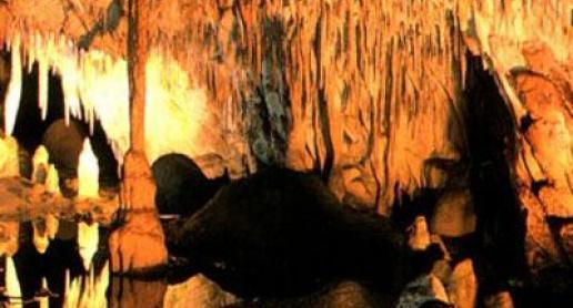 Jaskinia Raj - zdjęcie