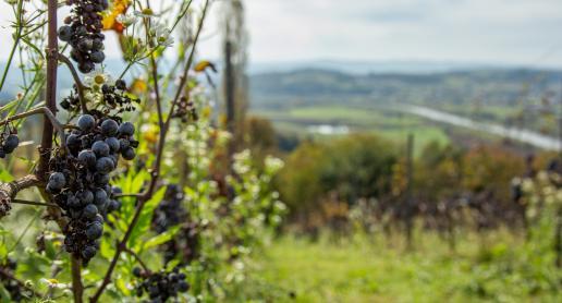 Fotografia krajobrazu - 5 wskazówek, jak robić piękne zdjęcia z podróży! - zdjęcie