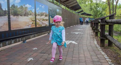 Atrakcje dla dzieci - pomysły na Dzień Dziecka i nie tylko! - zdjęcie