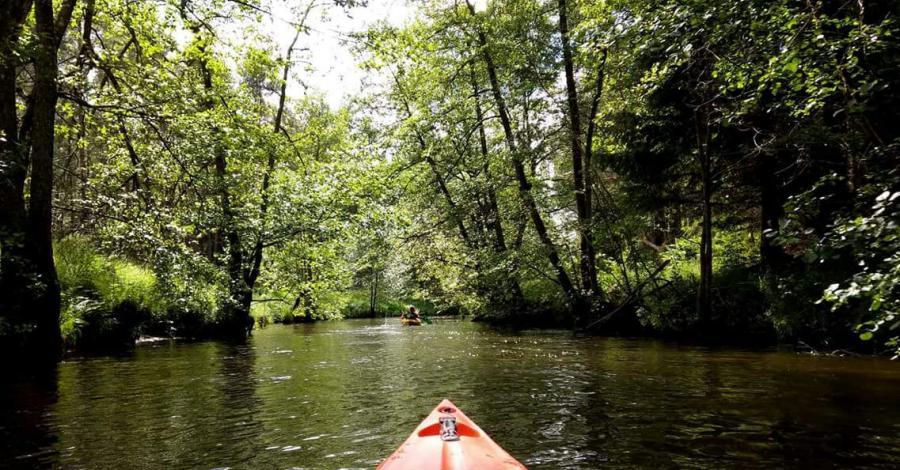 Spływy Kaszuby Kajaki - zdjęcie