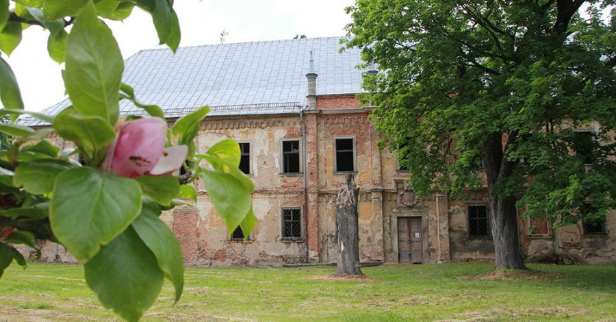 Pałac w Przydrożu Małym - zdjęcie