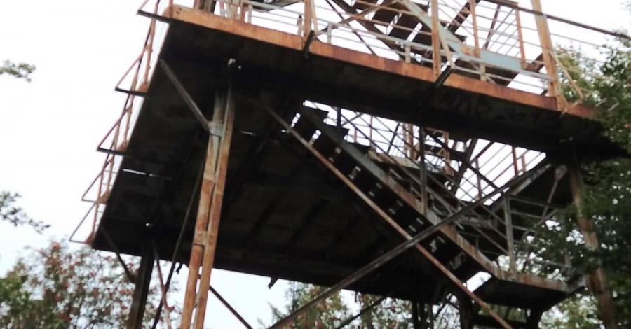 Wieża widokowa na Kalenicy - zdjęcie