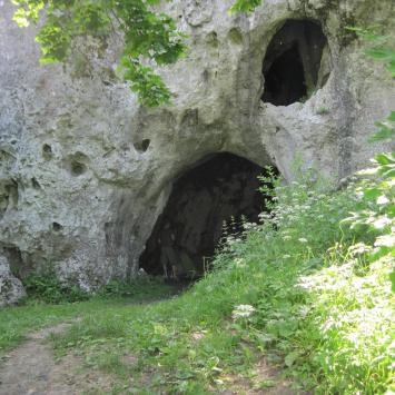 Jaskinia Jasna w Strzegowej