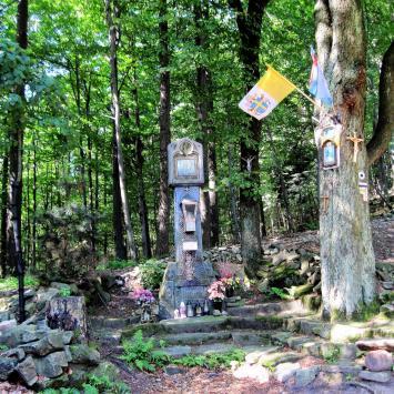 Przełęcz u Panienki w Beskidzie Małym