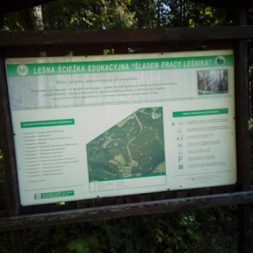 Leśna Ścieżka Edukacyjna w Mochnaczce Wyżnej