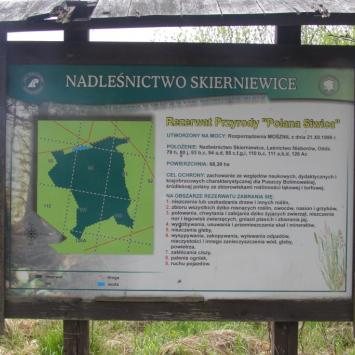 Rezerwat Polana Siwica w Puszczy Bolimowskiej