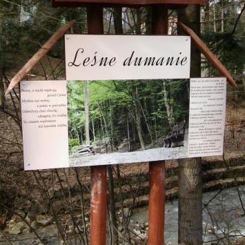 Ścieżka Leśne Dumanie w Rymanowie Zdroju