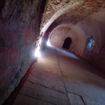 Podziemna Trasa Nietoperzowa w Nowym Wiśniczu