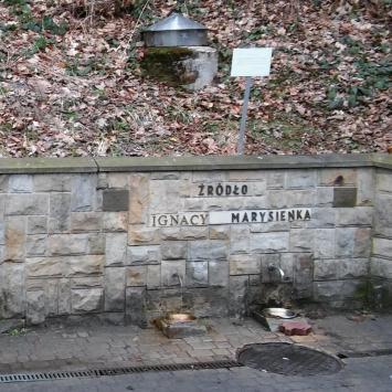 Źródła wód mineralnych Ignacy i Marysieńka w Rymanowie Zdroju
