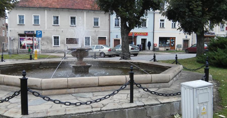 Fontanna w Międzylesiu, mokunka