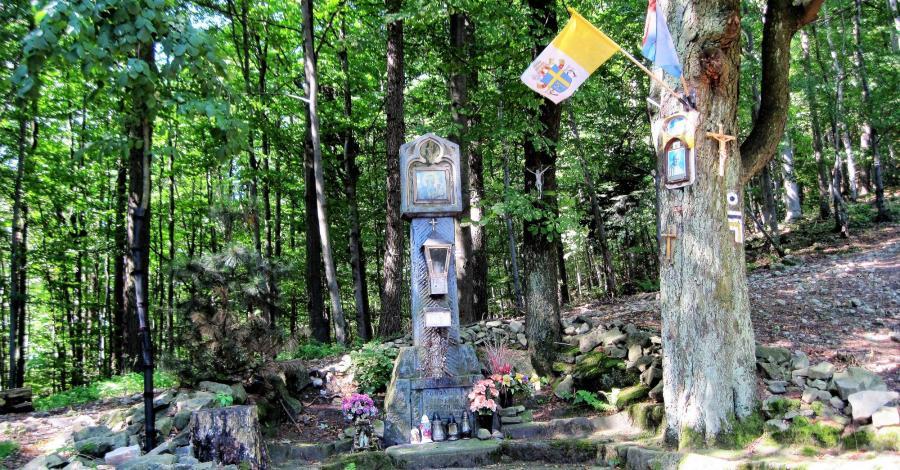 Przełęcz u Panienki w Beskidzie Małym - zdjęcie