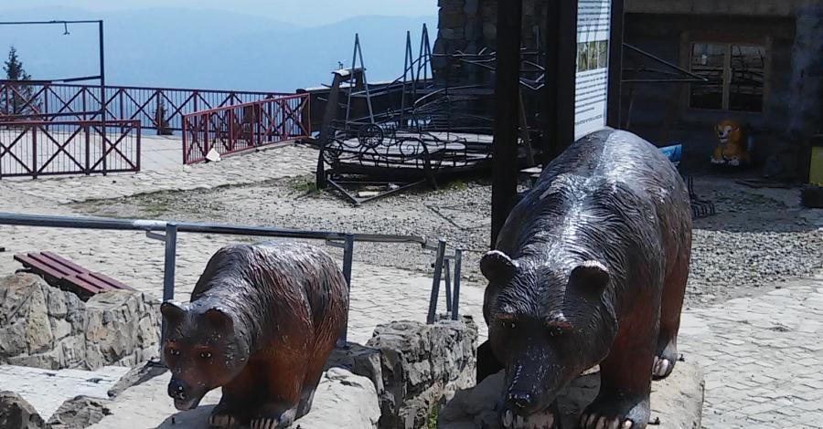 Rzeźby niedźwiedzi na Jaworzynie Krynickiej - zdjęcie