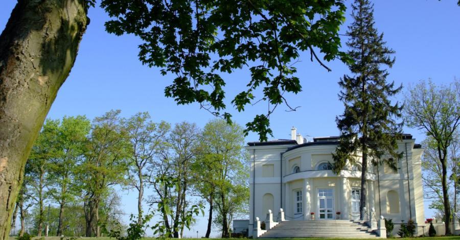 Pałac w Smólsku - zdjęcie