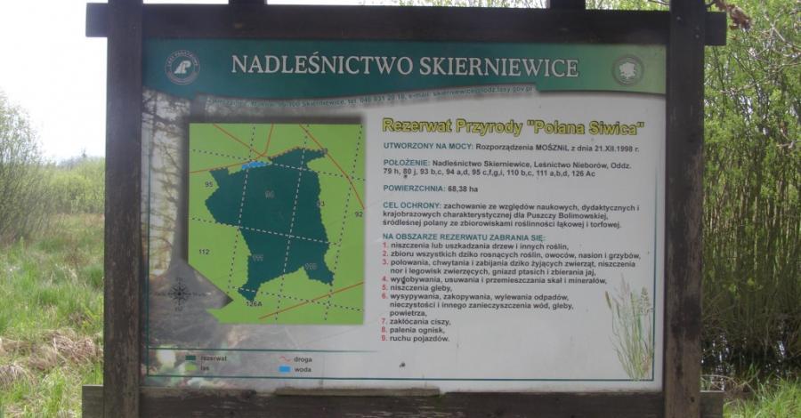 Rezerwat Polana Siwica w Puszczy Bolimowskiej - zdjęcie