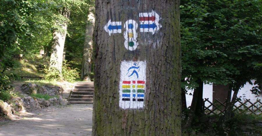 Park Bażantarnia w Elblągu - zdjęcie