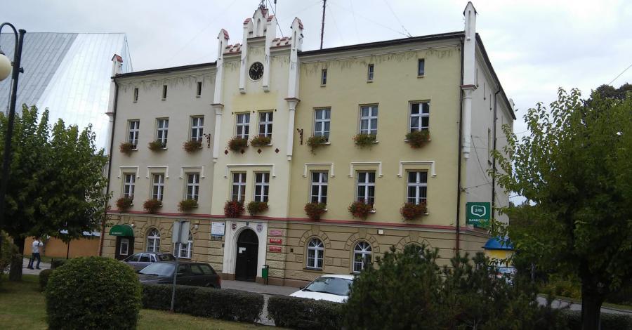 Ratusz w Międzylesiu, mokunka