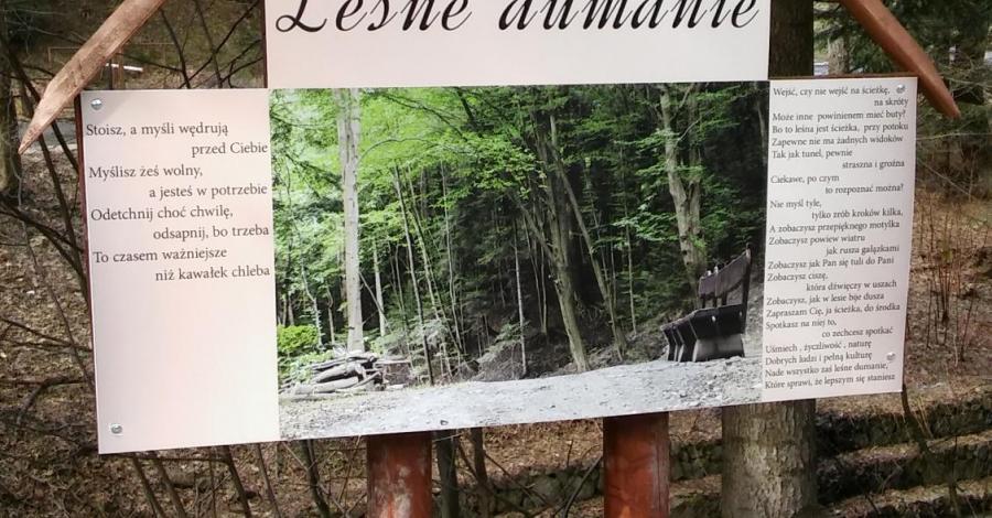 Ścieżka Leśne Dumanie w Rymanowie Zdroju - zdjęcie