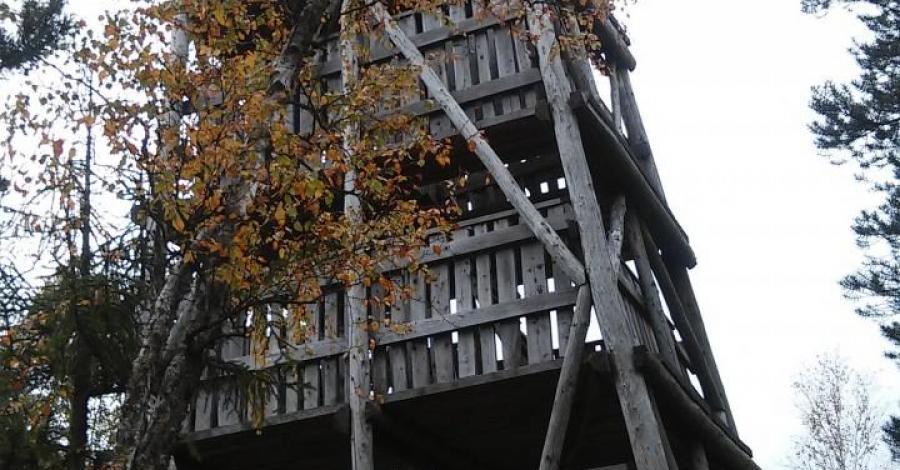Wieża widokowa na Torfowisku pod Zieleńcem  - zdjęcie