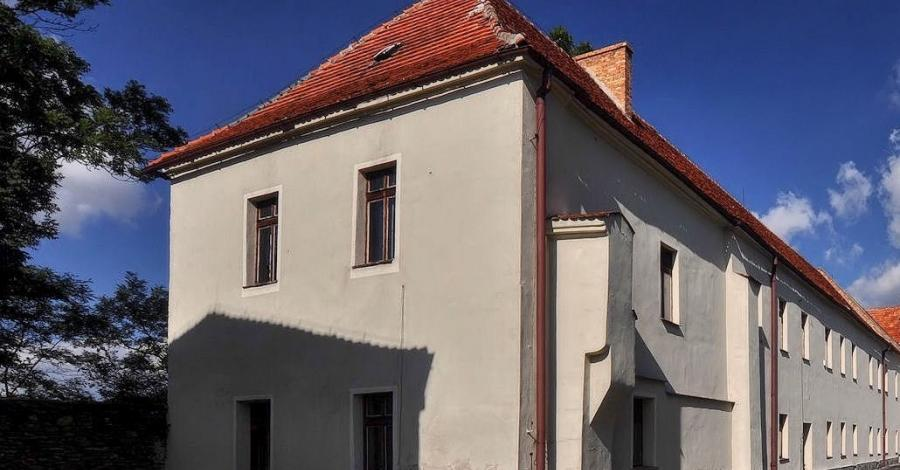 Zamek w Niemczy - zdjęcie