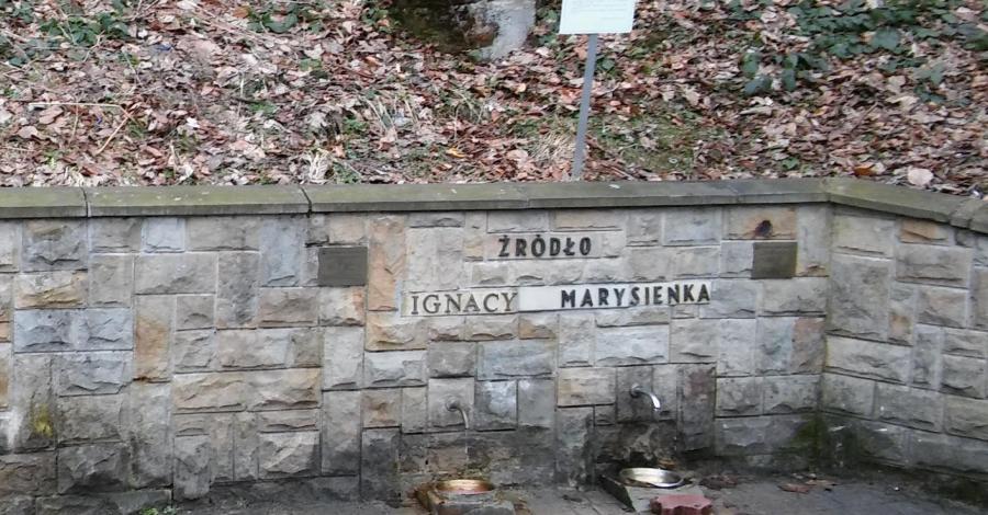 Źródła wód mineralnych Ignacy i Marysieńka w Rymanowie Zdroju - zdjęcie