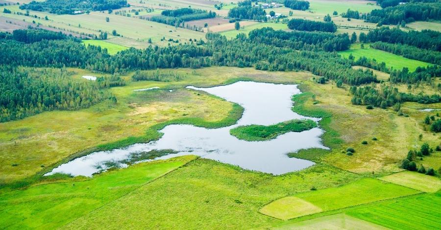 Bagna Bachmackie z jeziorem Jurdyga - zdjęcie