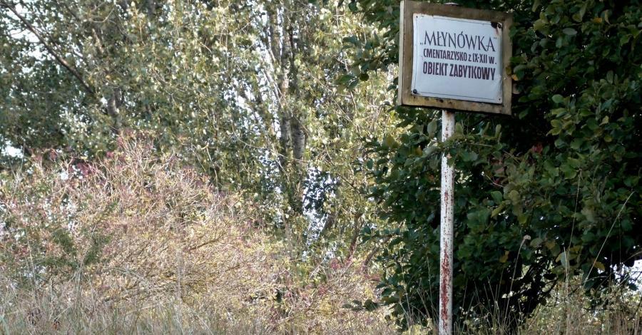 Cmentarzysko słowiańskie w Wolinie Młynówce - zdjęcie