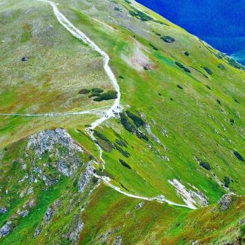 Siwa Przełęcz w Tatrach