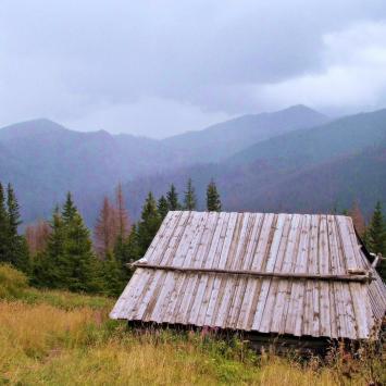 Hala Stoły w Tatrach