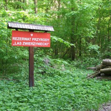Rezerwat Las Zwierzyniecki w Białymstoku