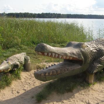 Krokodyl w Okunince
