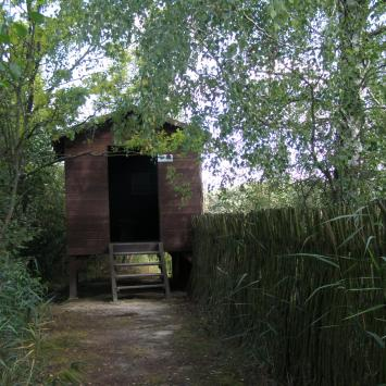 Ścieżka Perehod w Poleskim Parku Narodowym