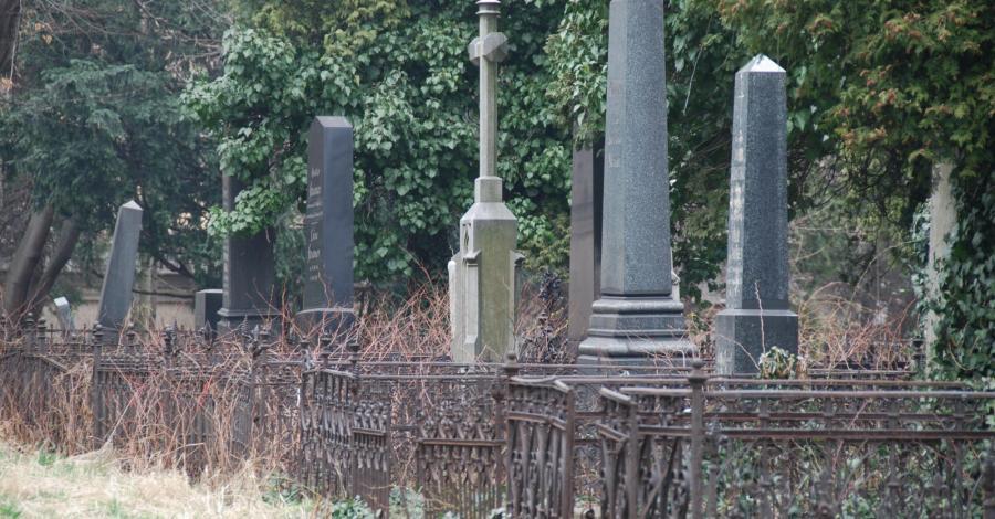 Stary Cmentarz Ewangelicki w Bielsku-Białej - zdjęcie
