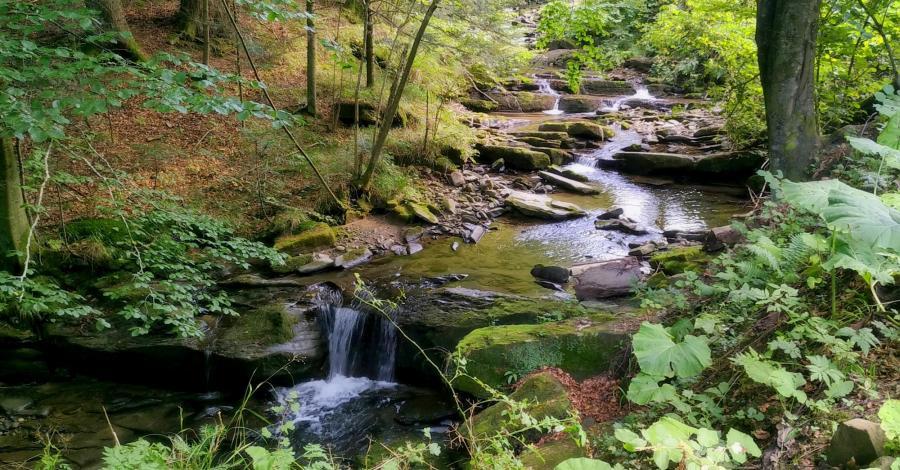Wodospad na potoku Hulskim w Bieszczadach - zdjęcie