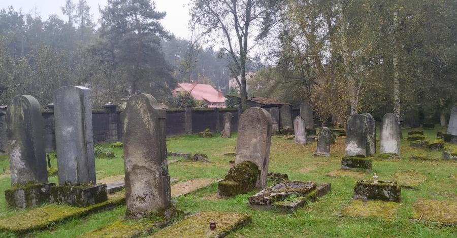 Cmentarz żydowski w Niepołomicach - zdjęcie