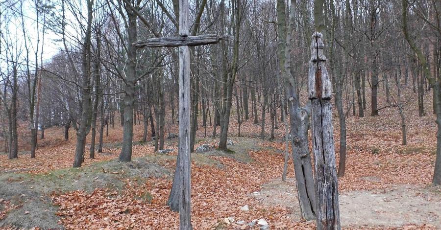 Cmentarz choleryczny w Mstowie - zdjęcie