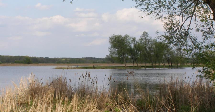 Stawy Dojlidzkie w Białymstoku - zdjęcie