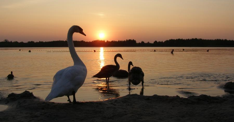 Jezioro Rotcze - zdjęcie