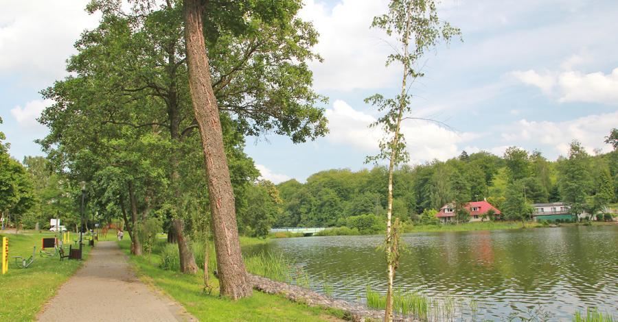 Jezioro Przywidzkie - zdjęcie