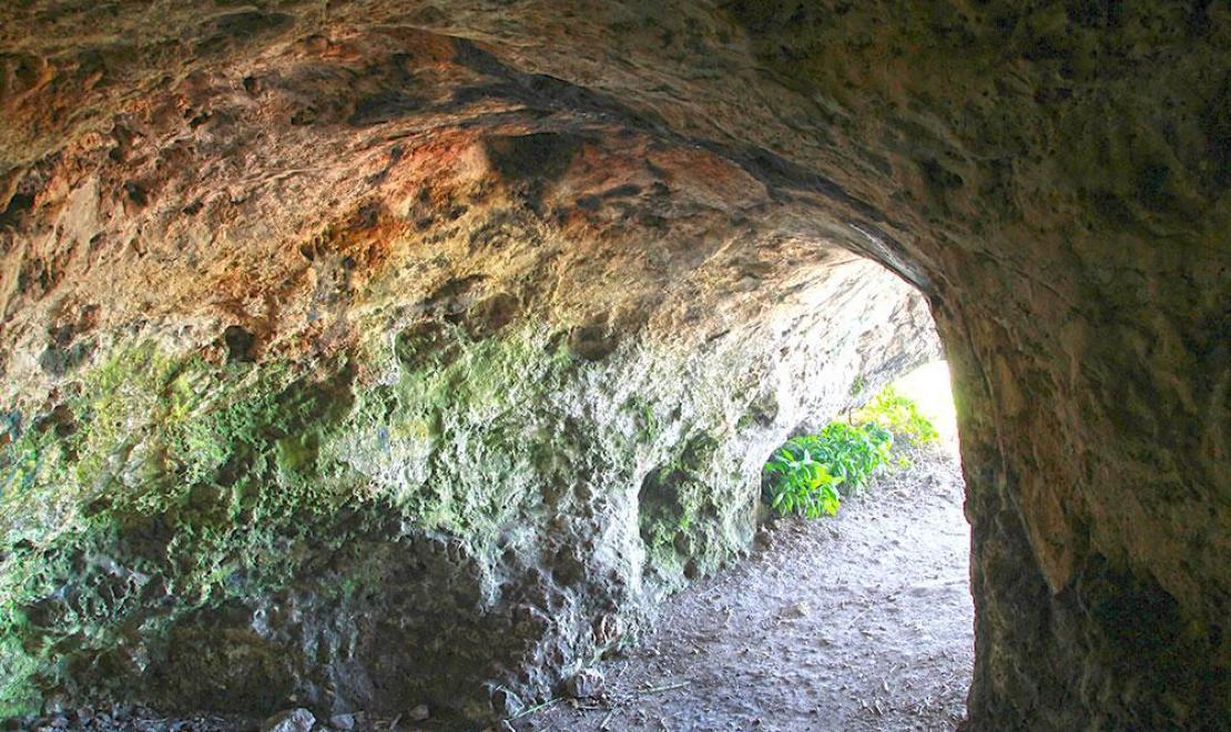 Jaskinia Towarna to znów Jura, a dokładniej Góry Towarne koło Olsztyna, w północnej część Wyżyny, inna nazwa to Jaskinia Niedźwiedzia, bowiem znajdowano tu liczne kości tych zwierząt kopalnych, łączy się ona z ciasną jaskinią o nazwie Dzwonnica