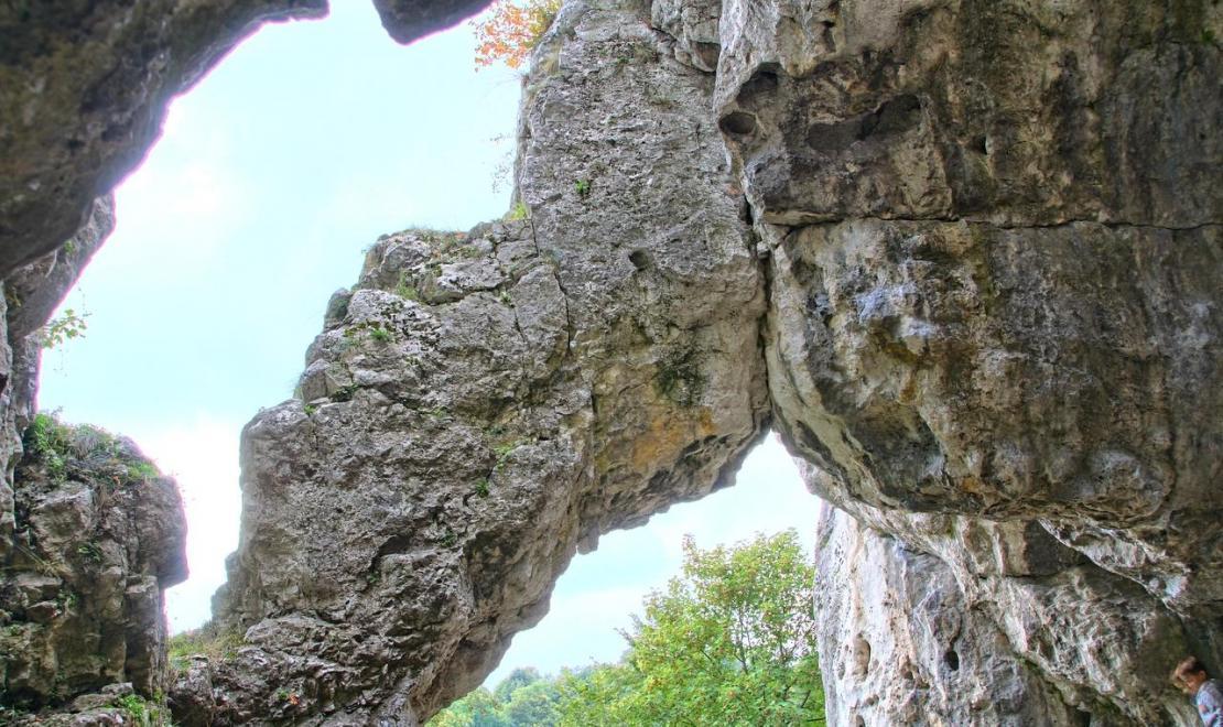 Jaskinia Mamutowa zwana też Wierzchowską Dolną znajduje się niedaleko Jaskini Wierzchowskiej Górnej, na Jurze