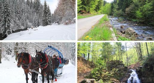4 pory roku - Dolina Białej Wisełki - zdjęcie