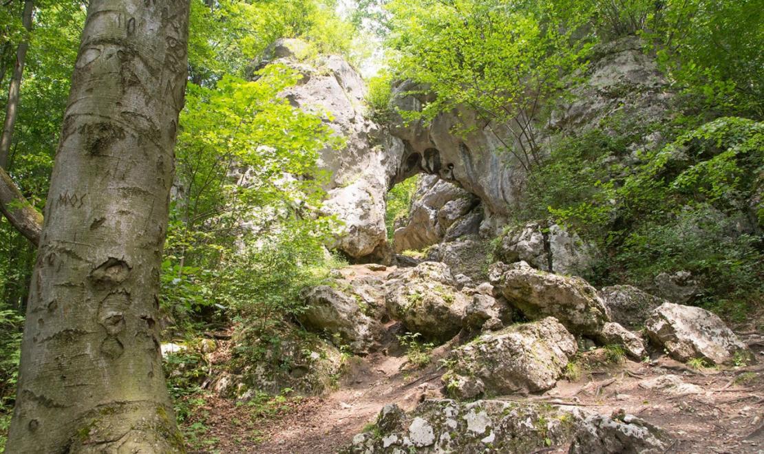 Popularna Brama Twardowskiego w Złotym Potoku, znana już uczniom podstawówki, bo często pokazywana w podręcznikach, to piękny, unikatowy twór skalny
