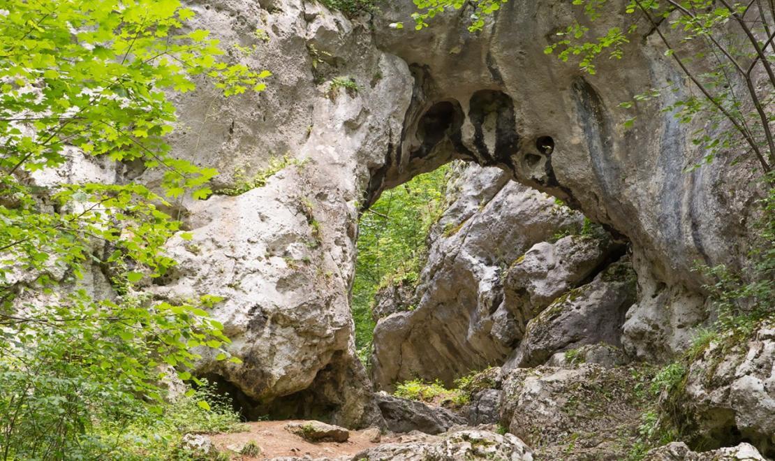 Takie ostańce zbudowane są z wapieni skalistych czyli tych najtwardszych, które oparły się erozji