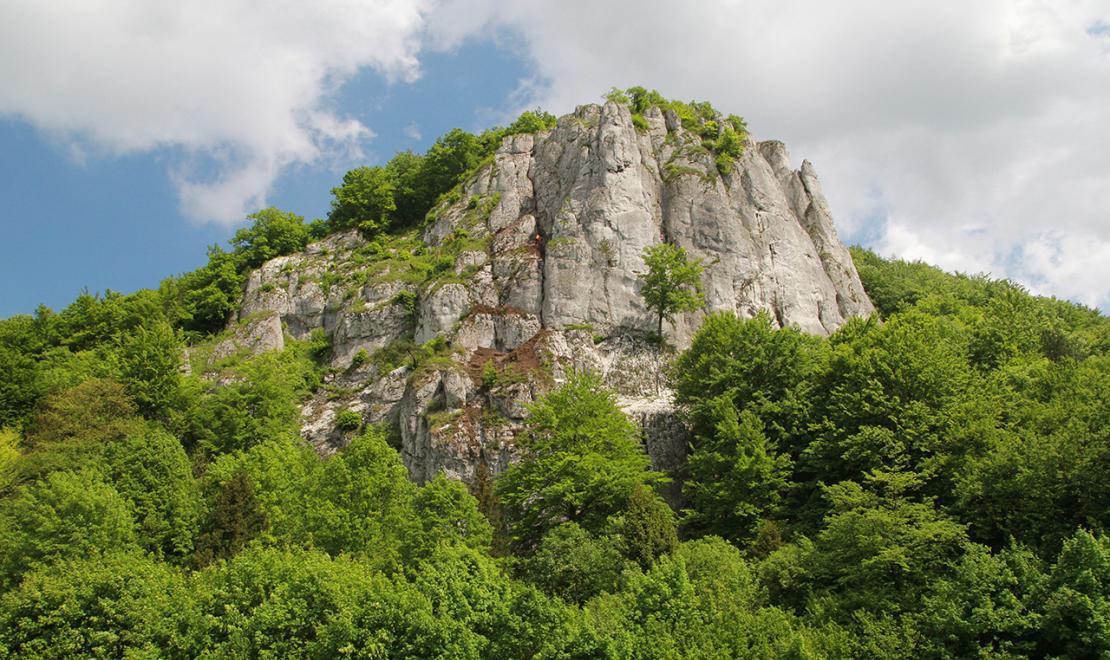 Sokolica w Dolinie Będkowskiej to przykład bardzo wysokiego ostańca, robiącego duże wrażenie, choć to nadal nie jest za dużo dla jurajskich wspinaczy