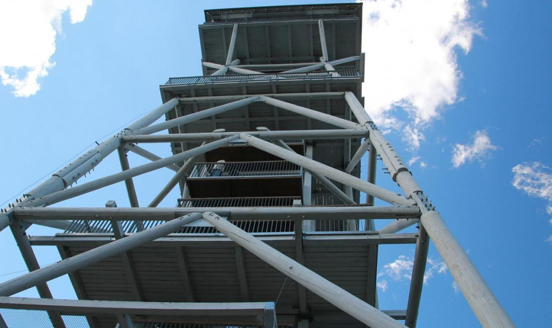 Wieża widokowa we Wdzydzach Kiszewskich