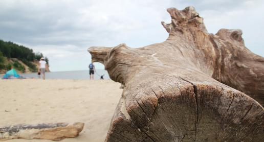Orłowo - najpiękniejsza polska plaża - zdjęcie