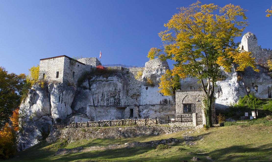 Zamek Bąkowiec w Morsku
