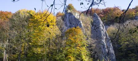Polska złota jesień na Jurze