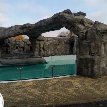 Pingwiny znów w Śląskim Zoo!