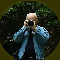 Avatar użytkownika JureK